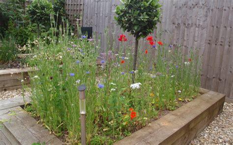 come creare un giardino fiorito creare un prato fiorito con fiori selvatici giardini verdi