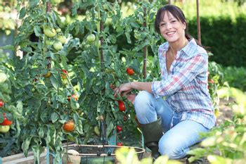 how to make a vegetable garden in your backyard beautysouthafrica healthy living start your own veggie