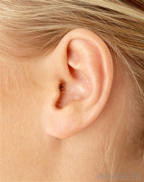 with ears how do i treat skin in the ears with pictures