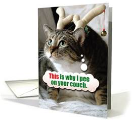 cat urinating on couch cat pee on couch christmas joke paper card 1457166