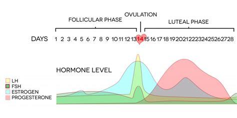 period hormones mood swings premenstrual dysphoric disorder pmdd simple and