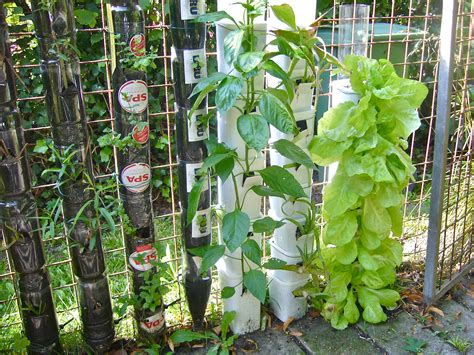 farming or gardening in bottle towers or pot towers