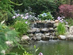How To Build A Waterfall In Your Backyard Garden Ponds Are A Delight Ramblin Through Dave S Garden