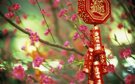 traditional new year wallpaper flowers china signs wallpaper 1920x1200 20518