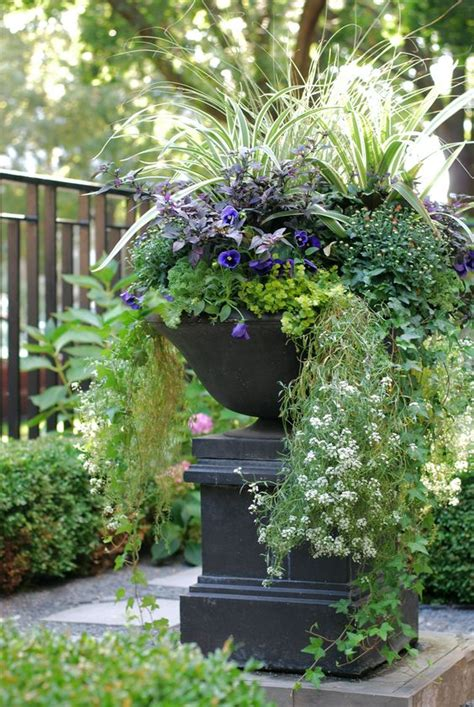 Front Yard Planters by Fall Annuals Container Planter Front Yard Urn Landscape Design Garden Topiarius Fall