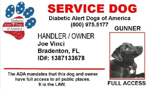 service dogs of america working service diabetic alert dogs of america
