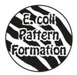 pattern formation wiki team tokyo metropolitan 2010 igem org