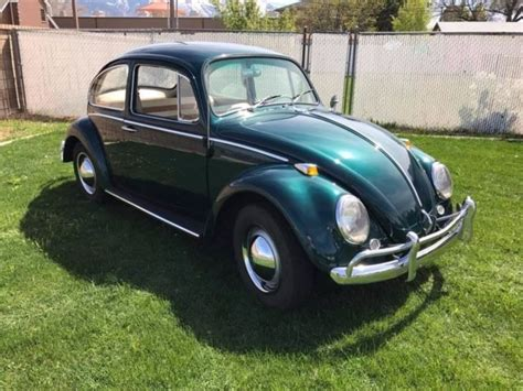 Volkswagen Bug For Sale By Owner by 1965 Volkswagen Beetle Vw Bug One Owner For Sale
