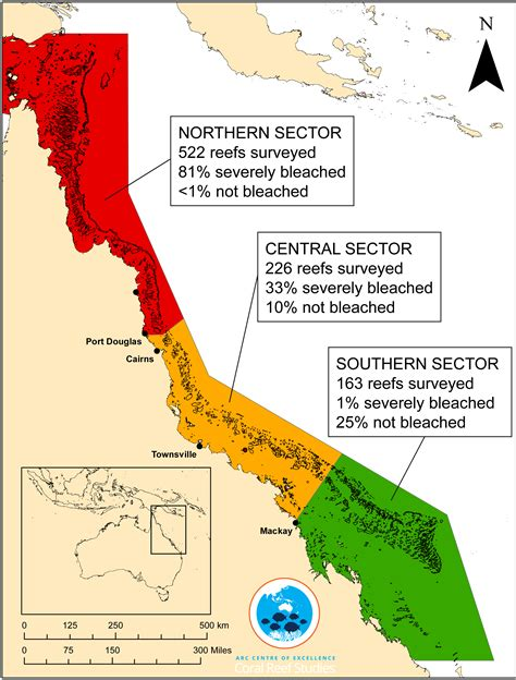 coral bleaching diagram global coral bleaching 2014 2017 status and an appeal for