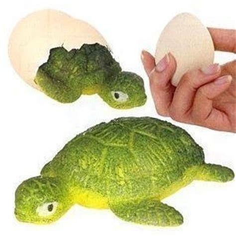 Growing Egg turtle egg magic growing pet toys