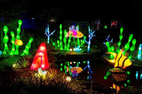 magical winter lights tickets magic lantern festival leeds at roundhay park review