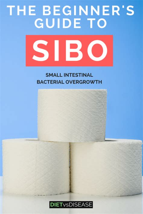 best diet for sibo the beginner s guide to sibo antibiotics and diet