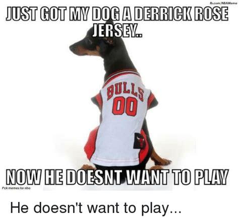 Derrick Rose Jersey Meme - ftcomnbameme just gotmmdog a derrick rose jersey 00 nowhe