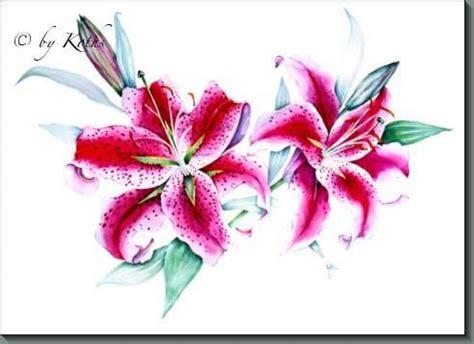 oriental lily tattoo designs lilium sp stargazer stargazer lily stargazer lily