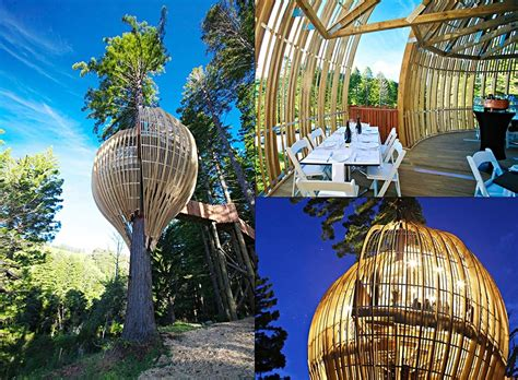 in house grill most amazing tree houses in the world
