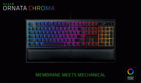 Razer Keyboard Ornata Chroma razer ornata chroma gaming keyboard
