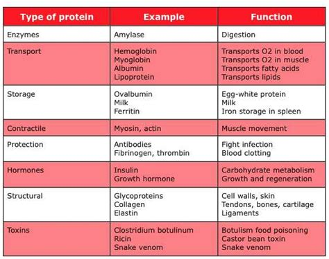 7 protein functions the world s catalog of ideas