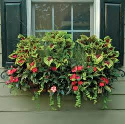 window box planters kinsman garden