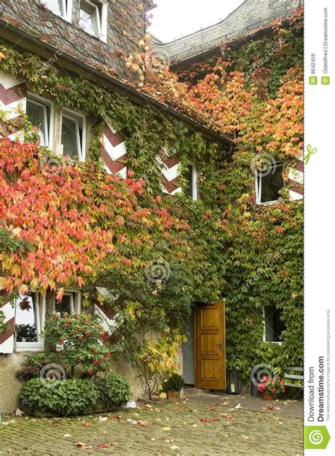 ivy and stone home on instagram ivy covered stone house royalty free stock images image