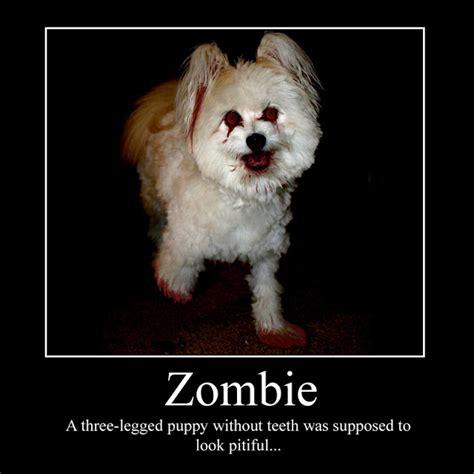 leeslittlewonderland funny zombie