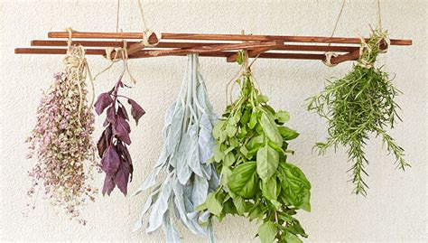 Kitchen Herb Garden Ideas hanging herb drying rack