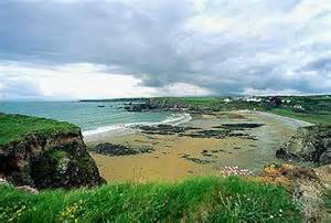 Tropical Plants Ireland - marine west coast climate climatology encyclopedia britannica
