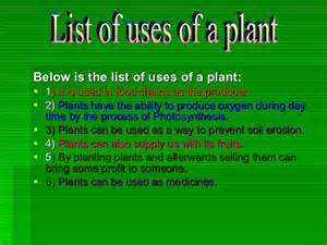 Essay On Plant In Our Daily by Uses Of A Plant