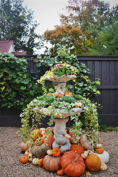 fall plants container gardening pinterest 710 best fall is for planting your porch images on