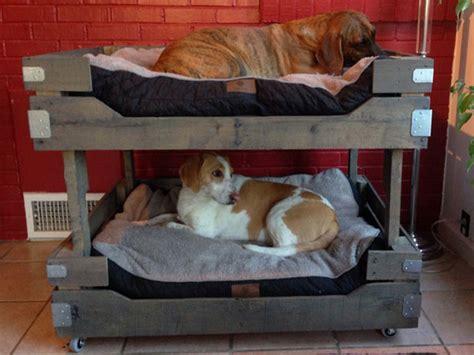 Hundeschlafplatz Selber Bauen by Hundebett Selber Bauen 13 Gem 252 Tliche Ideen F 252 R Ihren