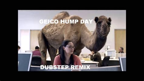 geico camel commercial hump day geico hump day commercial dubstep remix youtube