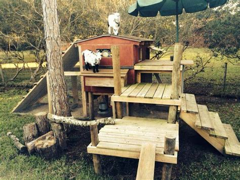 The Goat House by 1000 Images About Goat Shelter Ideas On A