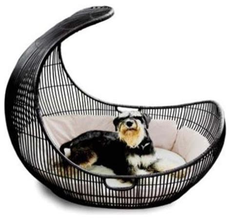 pet accessories voyage pet bed outdoor by kenneth cobonpue contemporary pet supplies by unicahome