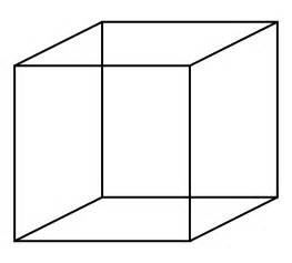 Visualize Square Opinions On Cube