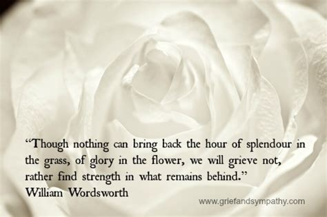 comfort for the bereaved comforting grief quotes for loved ones and for expressing