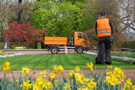 things to before hiring lawn care service professionals