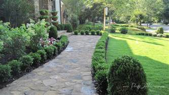 boxwoods line the sidewalk to the door g a r d e n front yard pinterest front yards yards