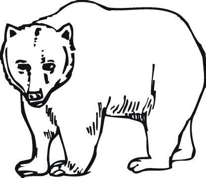 california bear coloring page דוב גדול דפי צביעה דובים