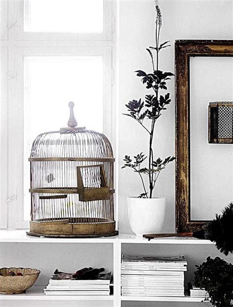 decorative bird cages in the interior romantic decor interior design bird cages caribbean living blog