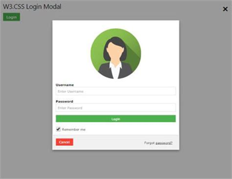 login page in asp net template w3 css demos