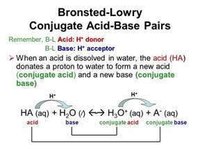A Brønsted Lowry Acid Is A Proton Acceptor Lewis Acid And Base Worksheet Lewis Acid Base Worksheet