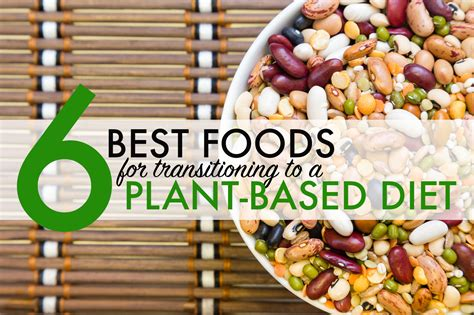 6 whole grain foods 6 foods to help you transition to a plant based diet whole