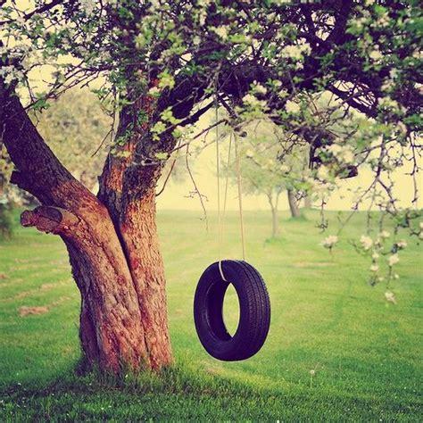 oak tree swing 1000 ideas about tree swings on pinterest swings