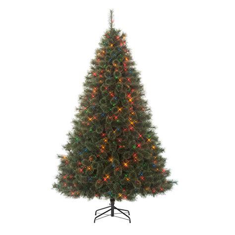 edison christmas tree lights jaclyn smith 7 5 multicolor edison cashmere spruce tree