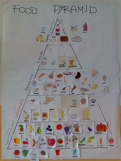 questionario sull alimentazione alimentazione ciaoprof org