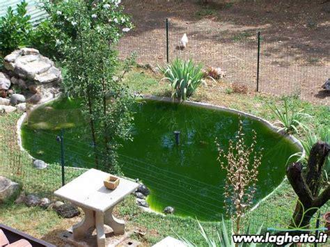 vasche per tartarughe d acqua dolce laghetto it sito per gli appassionati di laghetti pesci