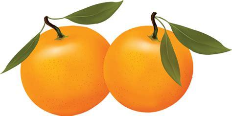 orange clipart orange clipart photo orange fruit clip