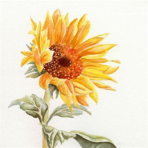 sunflower watercolor tattoo best 20 watercolor sunflower ideas on easy
