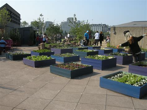 rooftop landscaping elizabeth roof garden created for festival of britain s 60th anniversary
