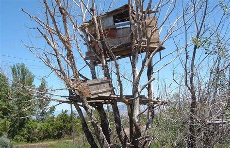 Cabane Arbre Enfant by Des Petites Maisons Uniques Dans Des Lieux Improbables