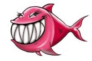 rotta fraudolenta ecco i 6 pesci d aprile targati lecconotizie e chi ha